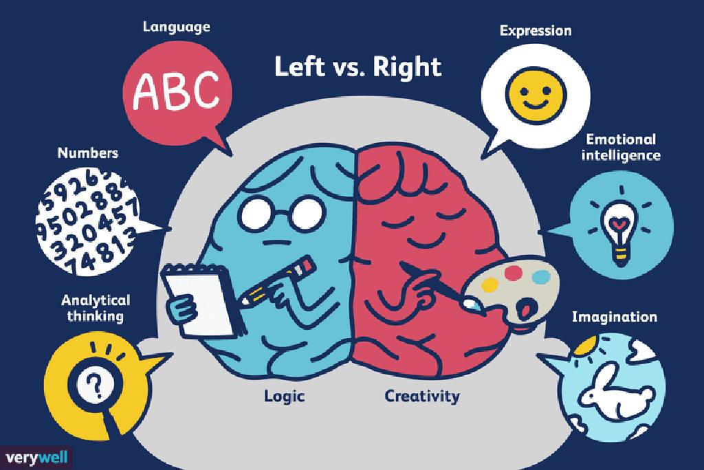 brainul drept datând creierul stâng